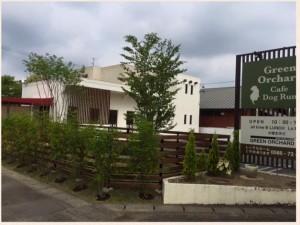 一宮市森本にあるドッグラン併設のドッグカフェ Green Orchardさん。とってもおしゃれなカフェです☆